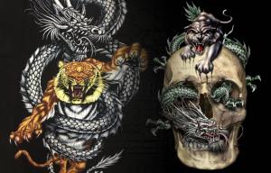 Teori Main Dragon Tiger Online yang Belum Banyak Diketahui